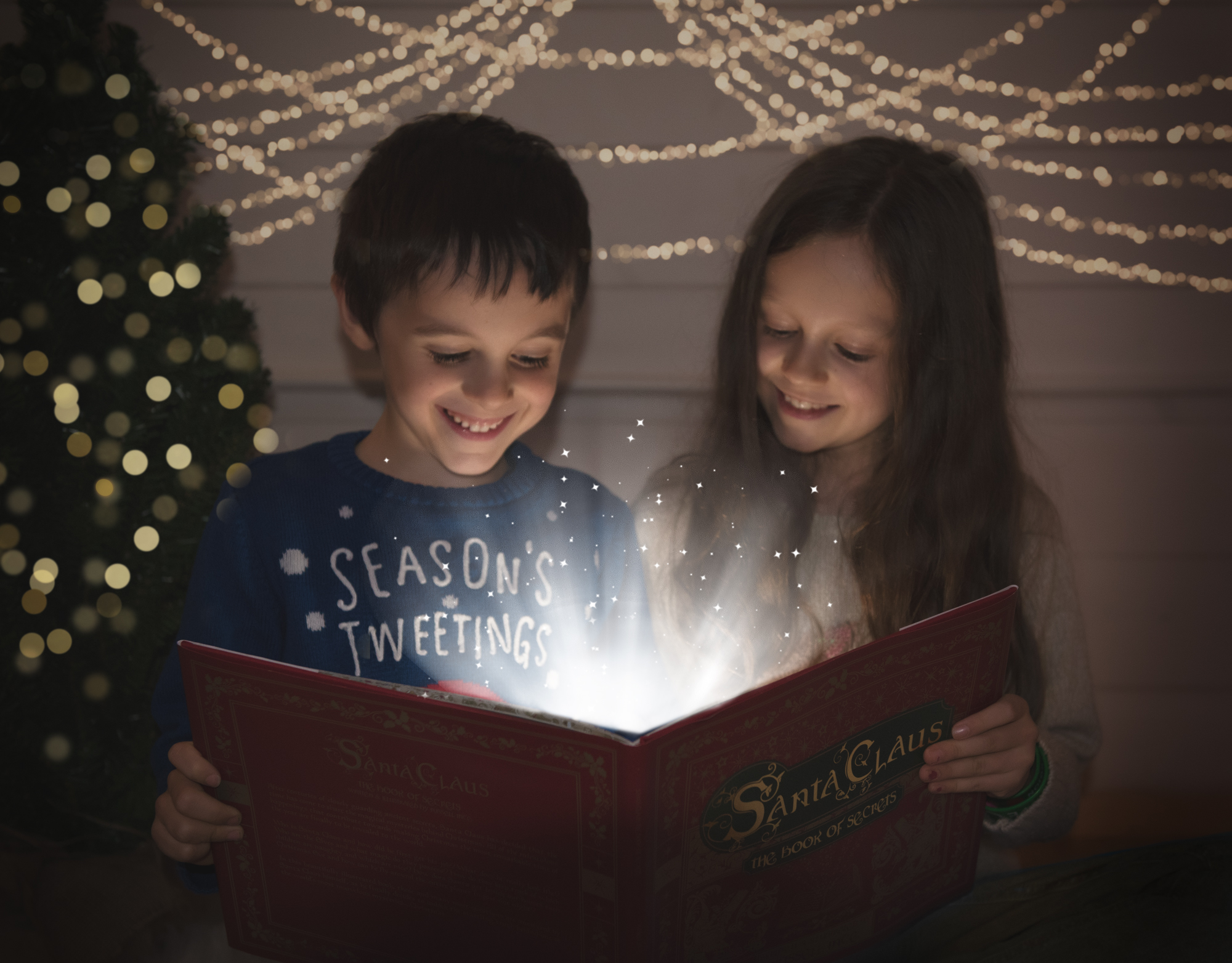 Magic Christmas book