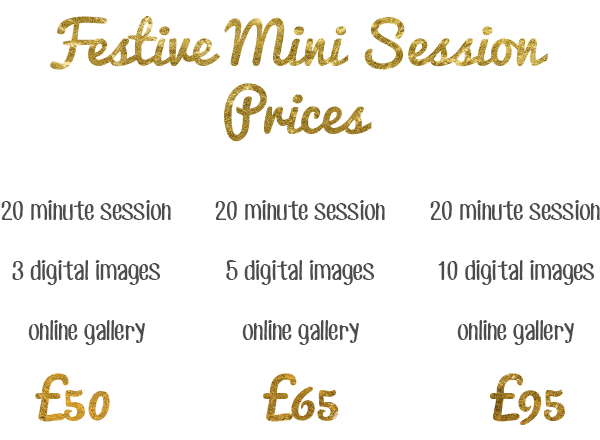 Christmas mini session fee